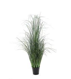Mr Plant gressplante 110 cm - Mr. Plant